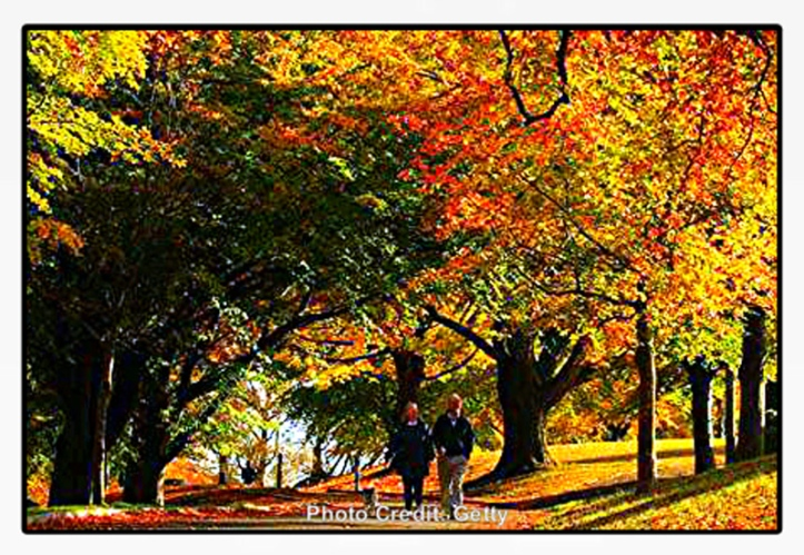 autumnal-equinox-info ug