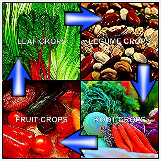 crop rotation graph
